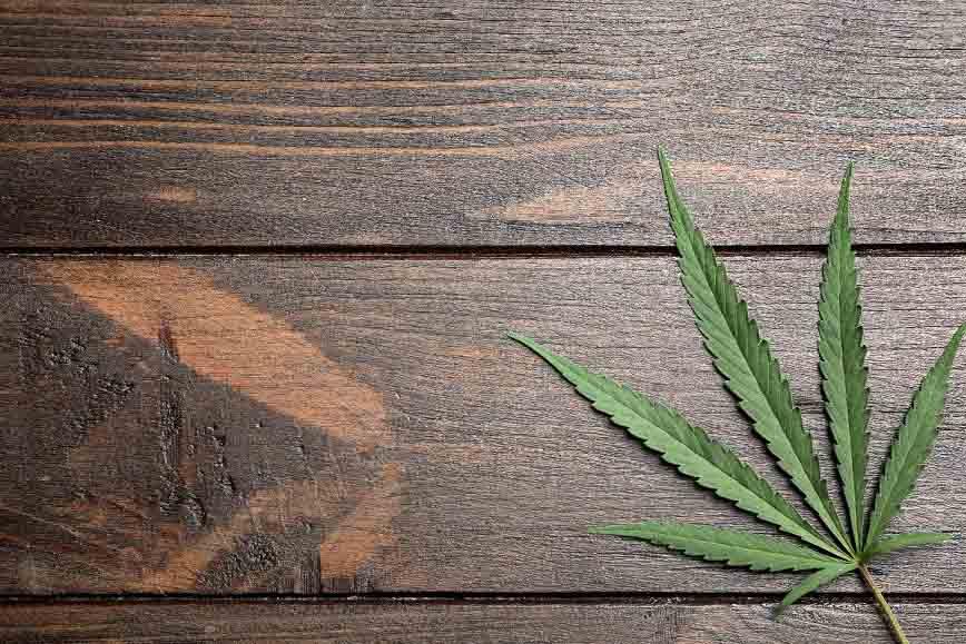 kevytkannabis